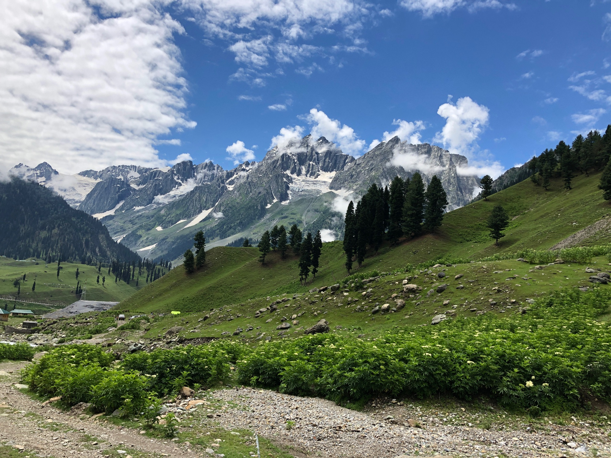 Kasmir Hills