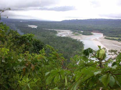View-to-Amazonia-Lodge