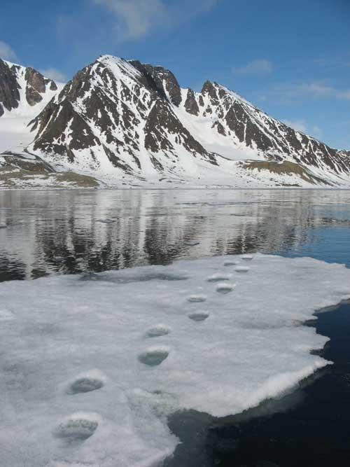Spitsbergen-Scenery-by-Erwin Vermeulen