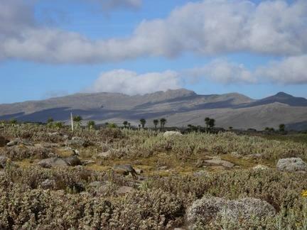 Sanetti-Plateau