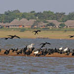 Kabini Lodge River Trip