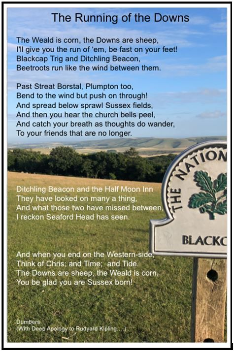 Blackcap poem