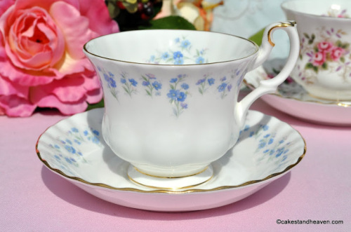 Memory Lane Vintage Bone China Teacup and Saucer