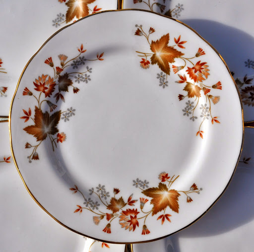 Colclough Avon Vintage Bone China Leaf Pattern Tea Plate - Stock 8