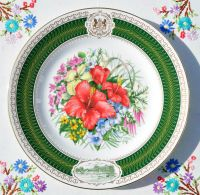 Spode Kew Flora Pacifica 23.5cm Fine Bone China Plate c.1990