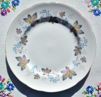 Paragon Enchantment Fine Bone China 20cm Vintage Plate