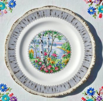 Royal Albert Silver Birch Vintage Bone China 20cm Plate