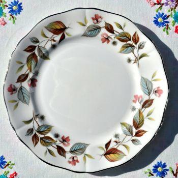 Royal Adderley Beechwood Platinum Rim 20cm Plate