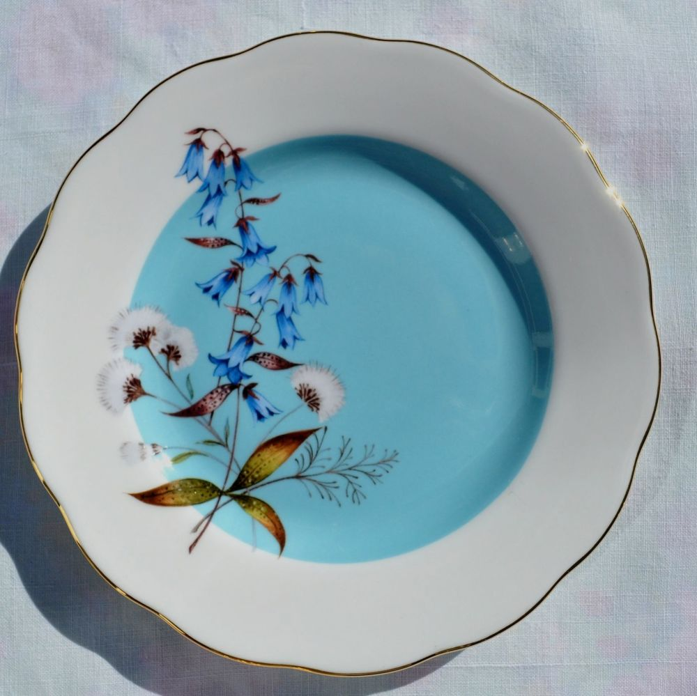 Royal Albert Festival 1950's Style Tea or Side Plate