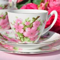 Gladstone Pink Blossom Teacup Trio c.1950s