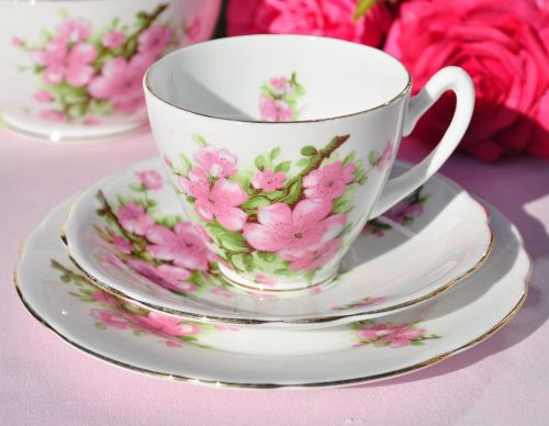 Gladstone Pink Blossom Vintage Bone China Teacup Trio c.1950s