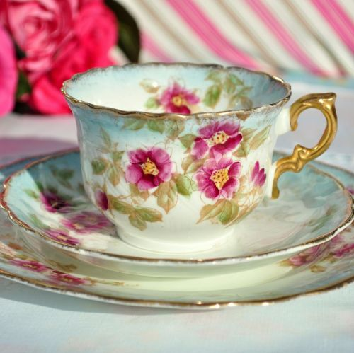 Antique W and Sons Teacup Trio