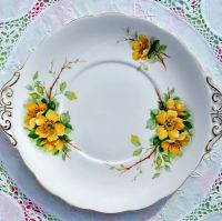Royal Standard Wild Rose Fine Bone China Cake Plate
