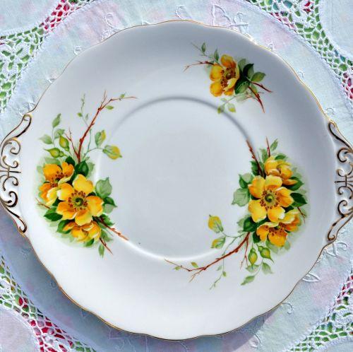 Royal Standard Wild Rose Fine Bone China Cake Plate
