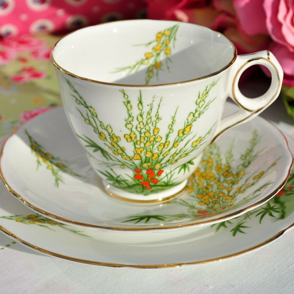 Royal Stafford Broom Hand Finished Teacup Trio c.1934+