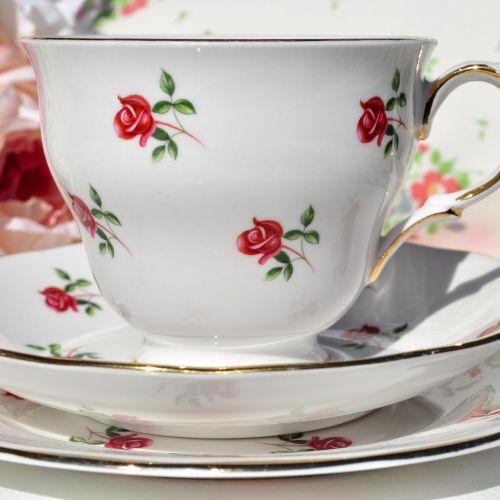 Colclough Fragrance Ditsy Roses Vintage Tea Cup Trio