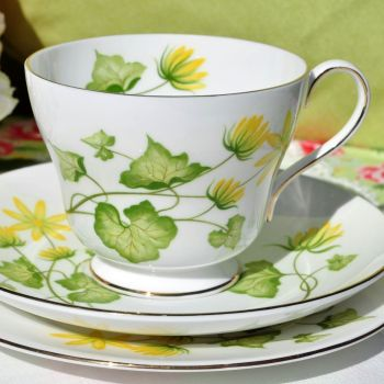 Shelley Celandine Pattern 14013 Teacup Trio c.1960s