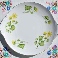 Shelley Celandine Pattern 14013 Cake Plate c.1960s