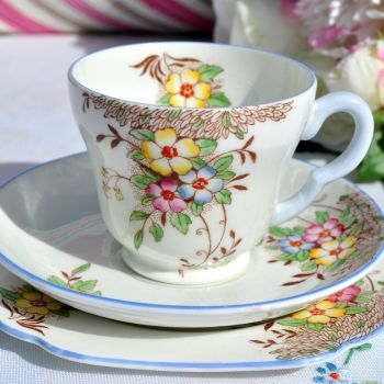 Stanley China Hand Painted Tea Cup Trio c.1950s