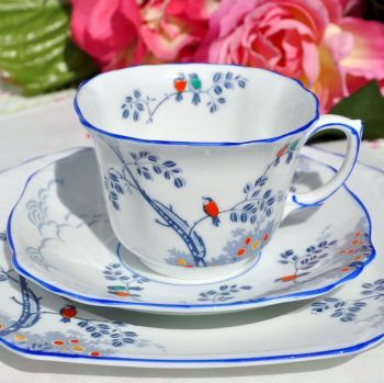 Foley China Hand Painted Little Birds Teacup Trio c.1920s