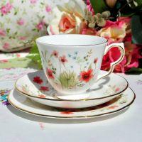 Colclough Meadow Pattern Teacup Trio