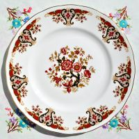 Colclough Royale Vintage Bone China 26.5cm Dinner Plate