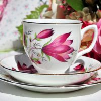 Duchess Tulip Tree China Teacup Trio c.1970s