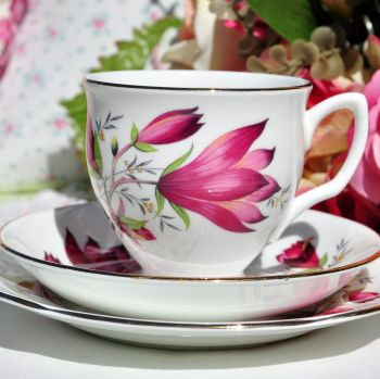 Duchess Tulip Tree Teacup Trio