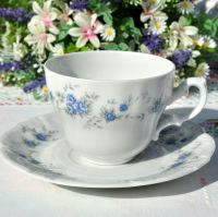 Winterling Schwarzenbach Blue Rose Teacup and Saucer