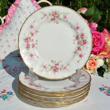 Paragon Victoriana Rose 20.5 cm Plate c.1960's