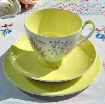 Queen Anne Glade Yellow Teacup Trio c.1950's