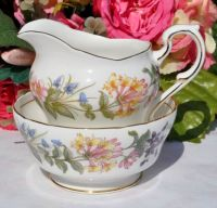 Paragon Country Lane Vintage China Milk Jug and Sugar Bowl