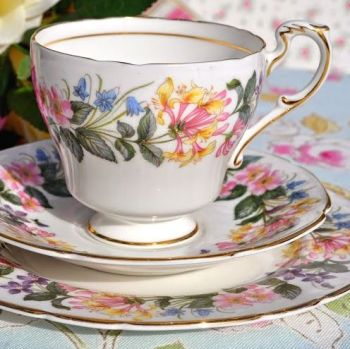 Paragon Country Lane Fine China Teacup Trio 17.5cm Tea Plate