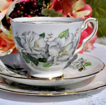 Royal Stafford Camellia Vintage Bone China Teacup Trio c.1950s