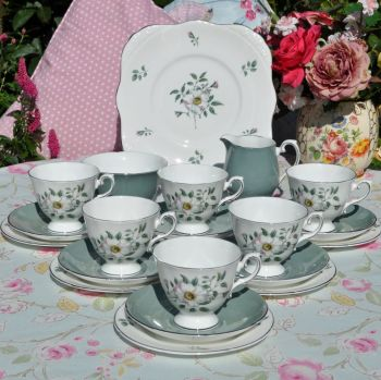 Royal Grafton Melrose Pink Blush Rose and Platinum Rims Vintage China Tea Set c.1957+