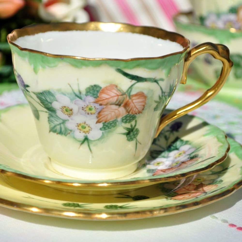 Paragon Bramble Hand Painted Teacup Trio with 22Kt Gilding. c.1940s
