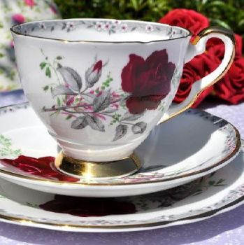 Royal Stafford Roses To Remember Teacup Trio c.1950s