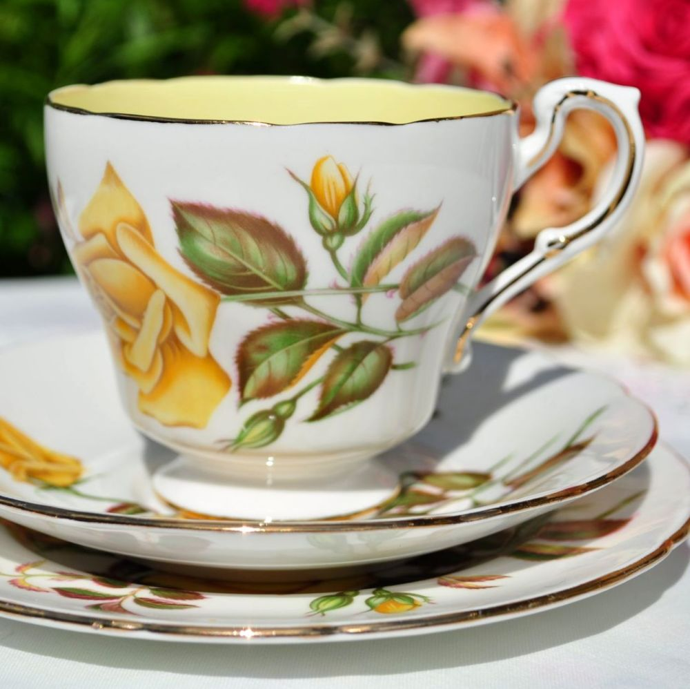Paragon Sunset Teacup Trio