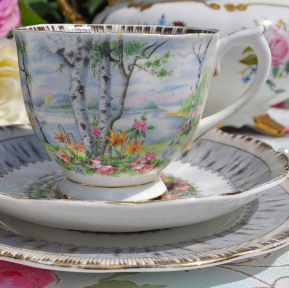 Royal Albert Silver Birch Pattern Collectible 1940's Bone China Teacup Trio