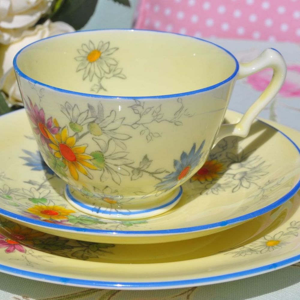 Crown Staffordshire Cream Floral Vintage Teacup, Saucer and Tea Plate Trio