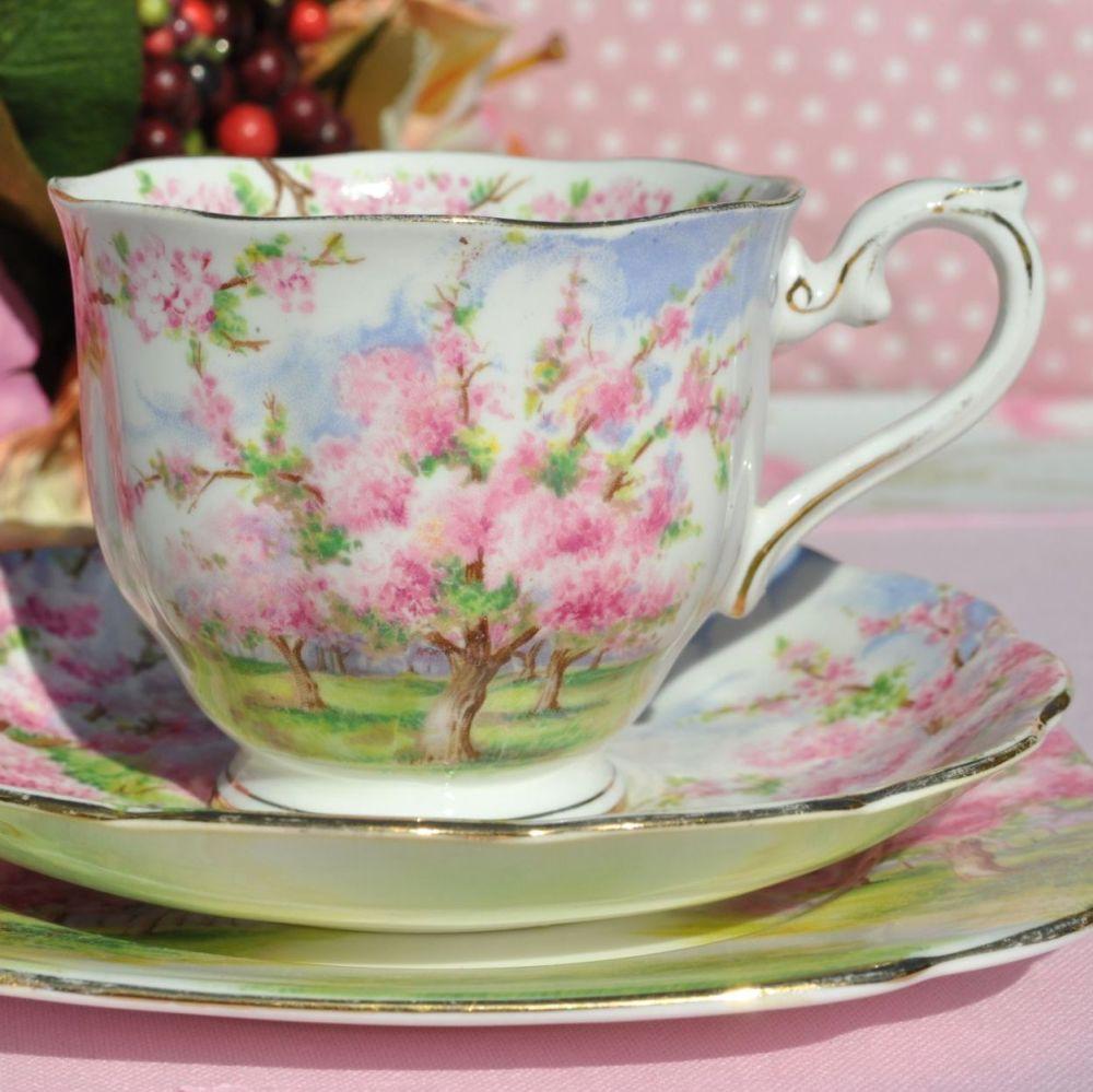 Royal Albert Blossom Time Teacup Trio Crown China Reg. No. 799933 c.1935