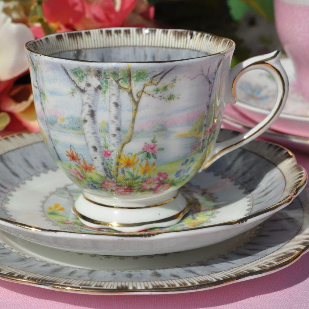 Royal Albert Silver Birch Vintage Tea Cup Trio c.1930s