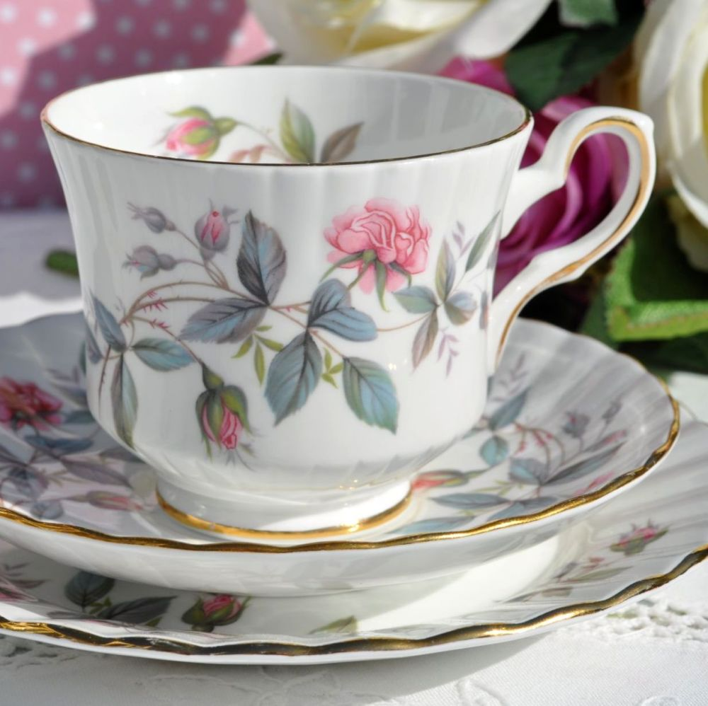 Royal Stafford Bramble Rose Vintage China Teacup, Saucer and Tea Plate