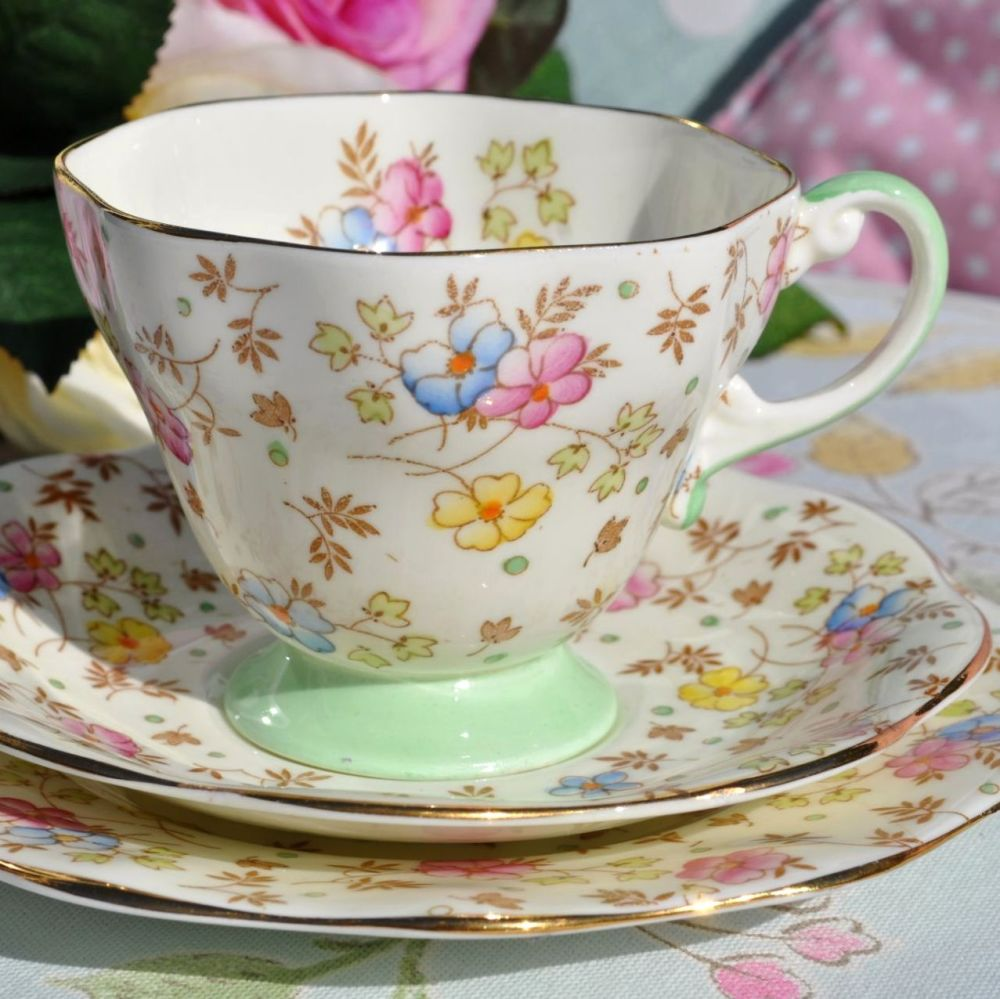 Foley Hand Painted Bone China Vintage Teacup, Saucer and Tea Plate