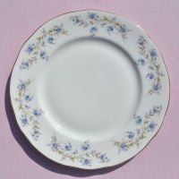 Duchess Tranquillity Vintage China 24cm Plate
