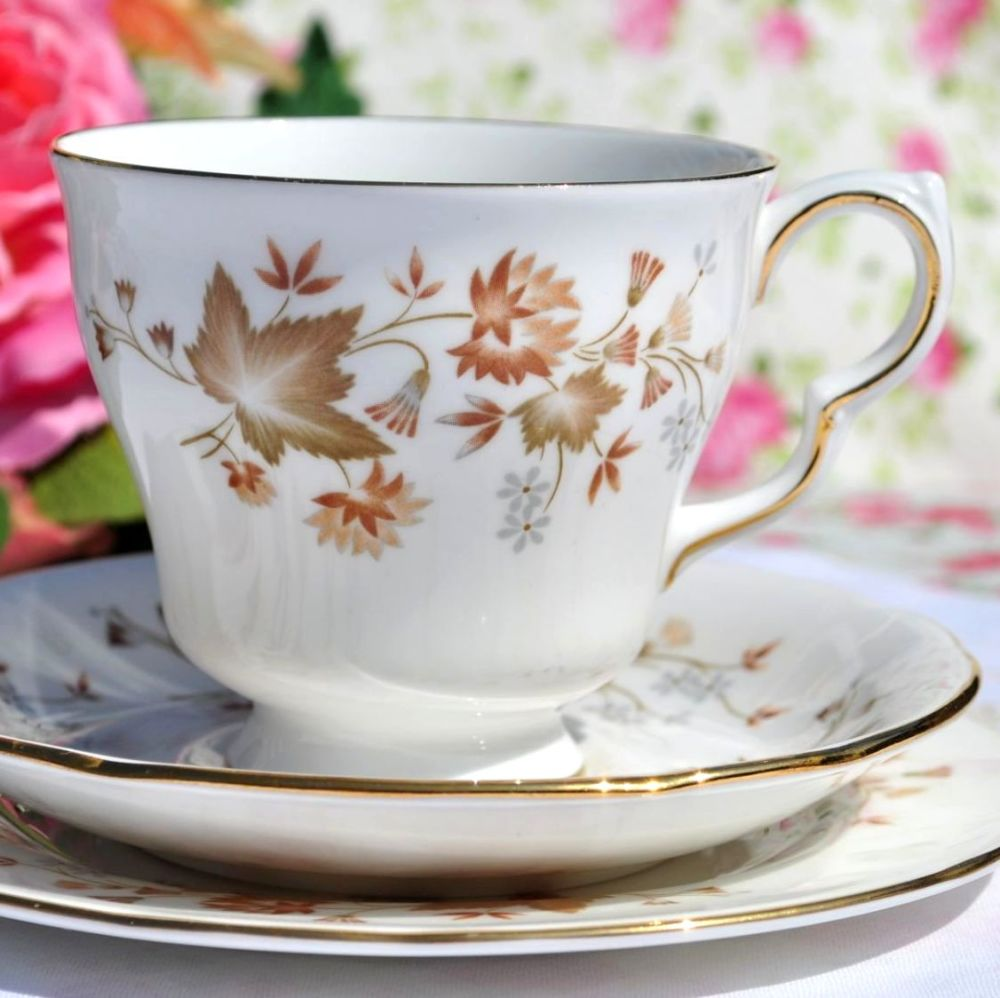 Colclough Avon Vintage Bone China Footed Teacup Trio c.1960s