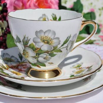Gladstone Wild Rose Vintage Fine Bone China Teacup Trio c.1950s