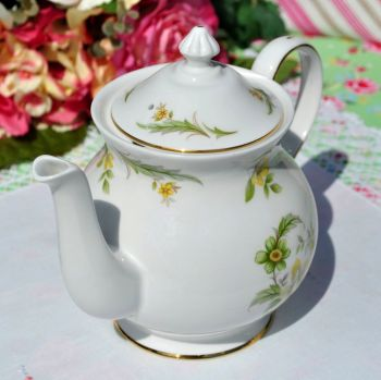 Royal Grafton Evesham Pattern Vintage Fine Bone China Teapot c.1957+