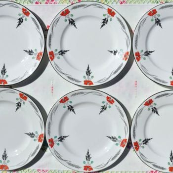 Shelley Art Deco Hand Painted Poppies Plates Set