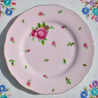 Royal Albert New Country Roses 20cm plate